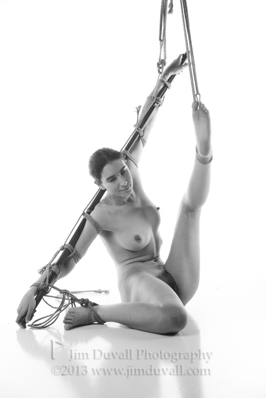 woman tied to a bamboo pole with one leg puled up model: Ten Galaxies