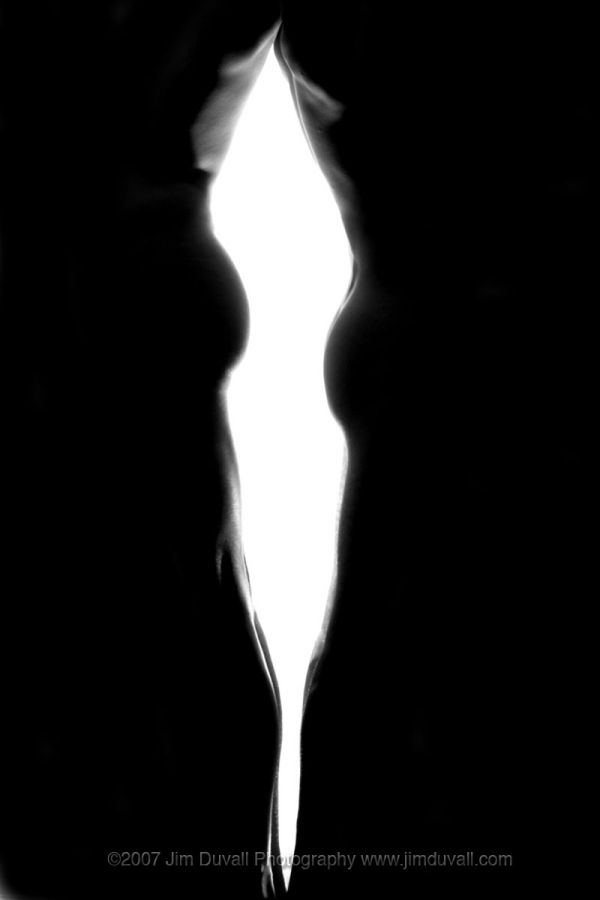 Silhouette of too nude bodies